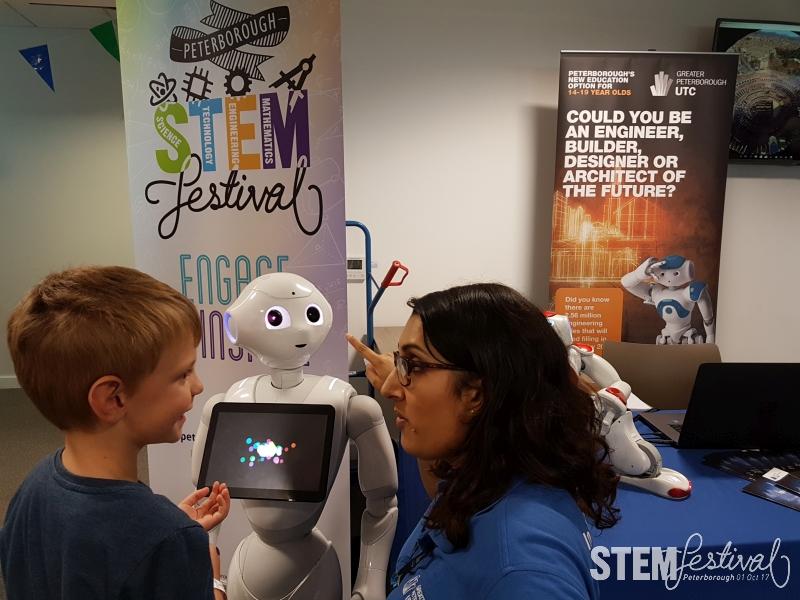 Let's organise a STEM Festival!